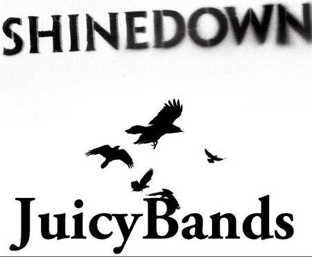 SHINEDOWN343